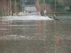 floods09001