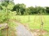 petrovska-gardens-clonmel-300613-002