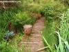 petrovska-gardens-clonmel-300613-008