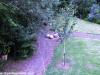 petrovska-gardens-clonmel-300613-012