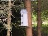petrovska-gardens-clonmel-300613-018
