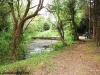 petrovska-gardens-clonmel-300613-020