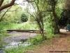 petrovska-gardens-clonmel-300613-021