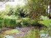 petrovska-gardens-clonmel-300613-023