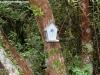 petrovska-gardens-clonmel-300613-024