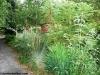 petrovska-gardens-clonmel-300613-031