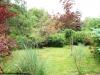 petrovska-gardens-clonmel-300613-033