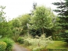 petrovska-gardens-clonmel-300613-034