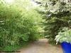 petrovska-gardens-clonmel-300613-037