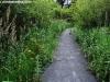 petrovska-gardens-clonmel-300613-041