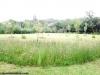 petrovska-gardens-clonmel-300613-042