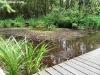 petrovska-gardens-clonmel-300613-044