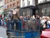 St Patricks Day Parade 2015 Clonmel-45.jpg