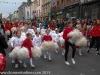 St Patricks Day Parade 2015 Clonmel-58.jpg