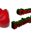 "Thumbnail image for Clonmel Boxing Academy for 10 and 11 year olds ""only"""