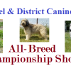 Thumbnail image for Clonmel & District Canine Club – All-Breed Championship Show 2014