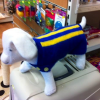 Thumbnail image for Is your dog ready to wear his county colours?