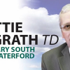 "Thumbnail image for ""Defenders of the Irish Greyhound Board are out of touch with members interests"" Mattie McGrath"