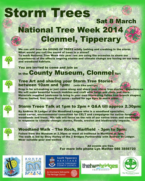 National Tree Week - Storm Trees Event Day in Clonmel @ Clonmel | Clonmel | Tipperary | Ireland